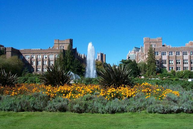 University of Washington-Seattle